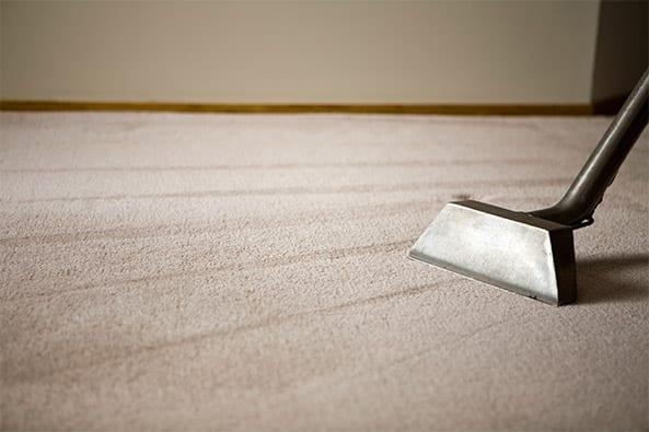 Sterilize Those Dust Mites in Carpet