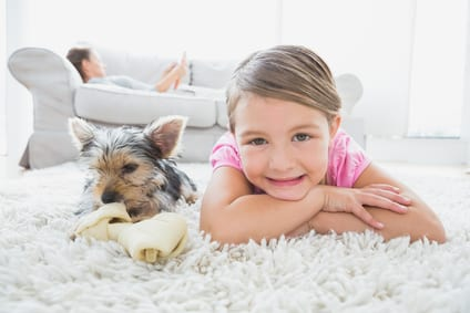 Carpet Care Between Professional Cleanings at Your Place of Business