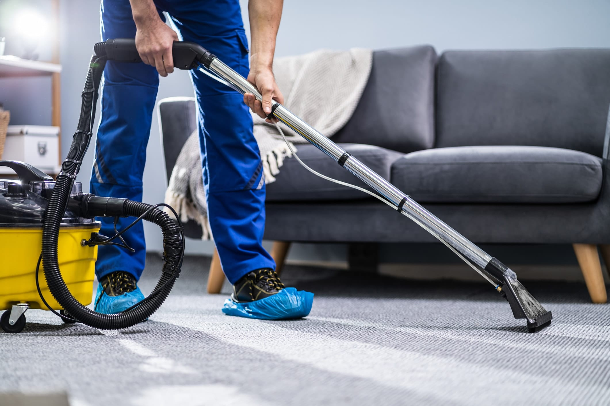 Control Indoor Allergies with Carpet Cleaning