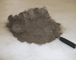 Dry Soil Removal from Area Rugs
